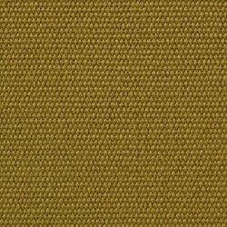 Laufmeterstoff - Plains ACEITE 77